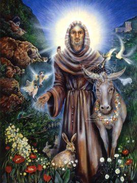 St Francis by Pamela Matthews