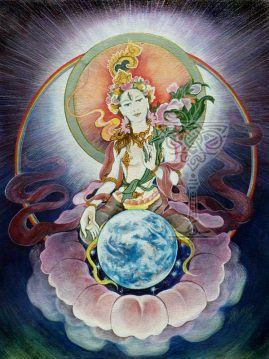 The White Tara by Pamela Matthews