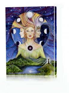Pamela Matthews - Grail Graphics - Giclee prints